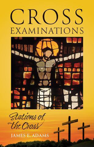 Picture of Cross Examinations: Stations of the Cross