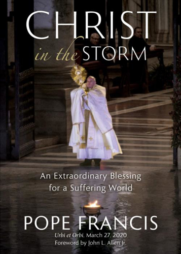 Picture of Christ in the Storm: An Extraordinary Blessing for a Suffering World